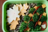 Bento Love: Change of Season
