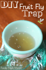 Easy DIY Fruit Fly Trap - Family Fresh Meals