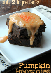 Two Ingredient Easy Pumpkin Brownies