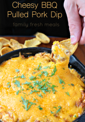 Cheesy BBQ Pulled Pork Dip